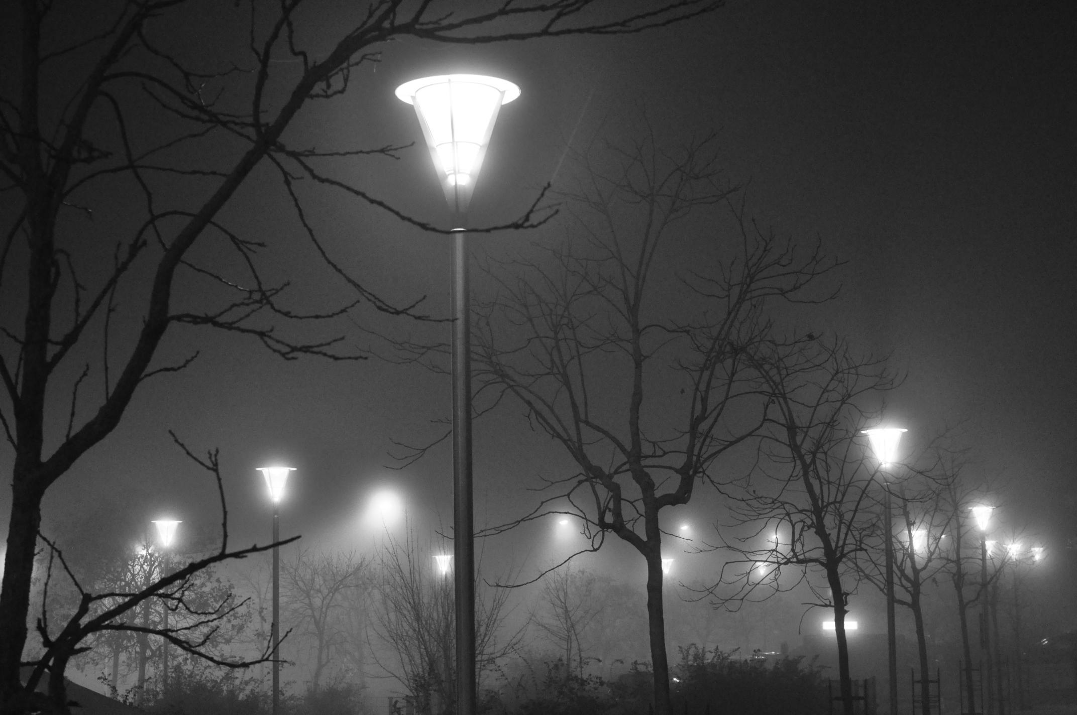 brouillard02